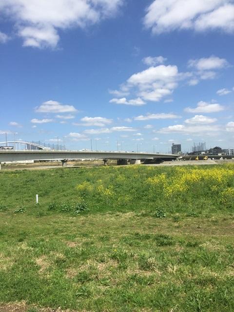 12.多摩川原橋左